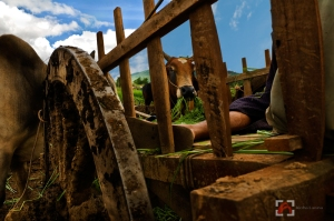 Shan State nap (c) Aloha Lavina