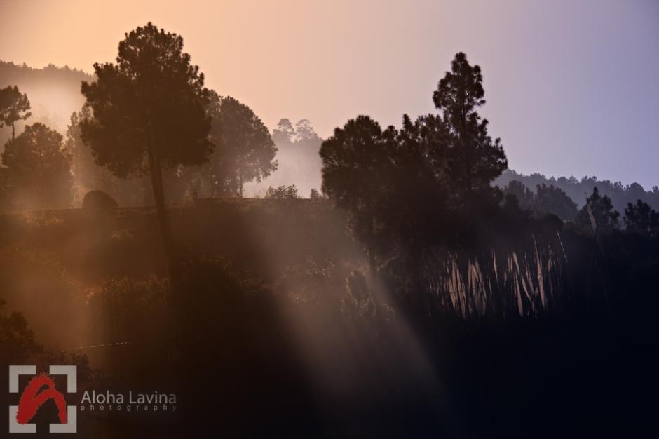 Morning light, Punakha